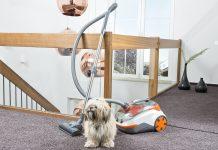 Thomas Cycloon Hybrid Pet & Friends mit Hund