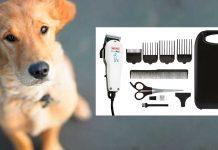 Wahl Show Pro: Die Tier-Schermaschine für zuhause