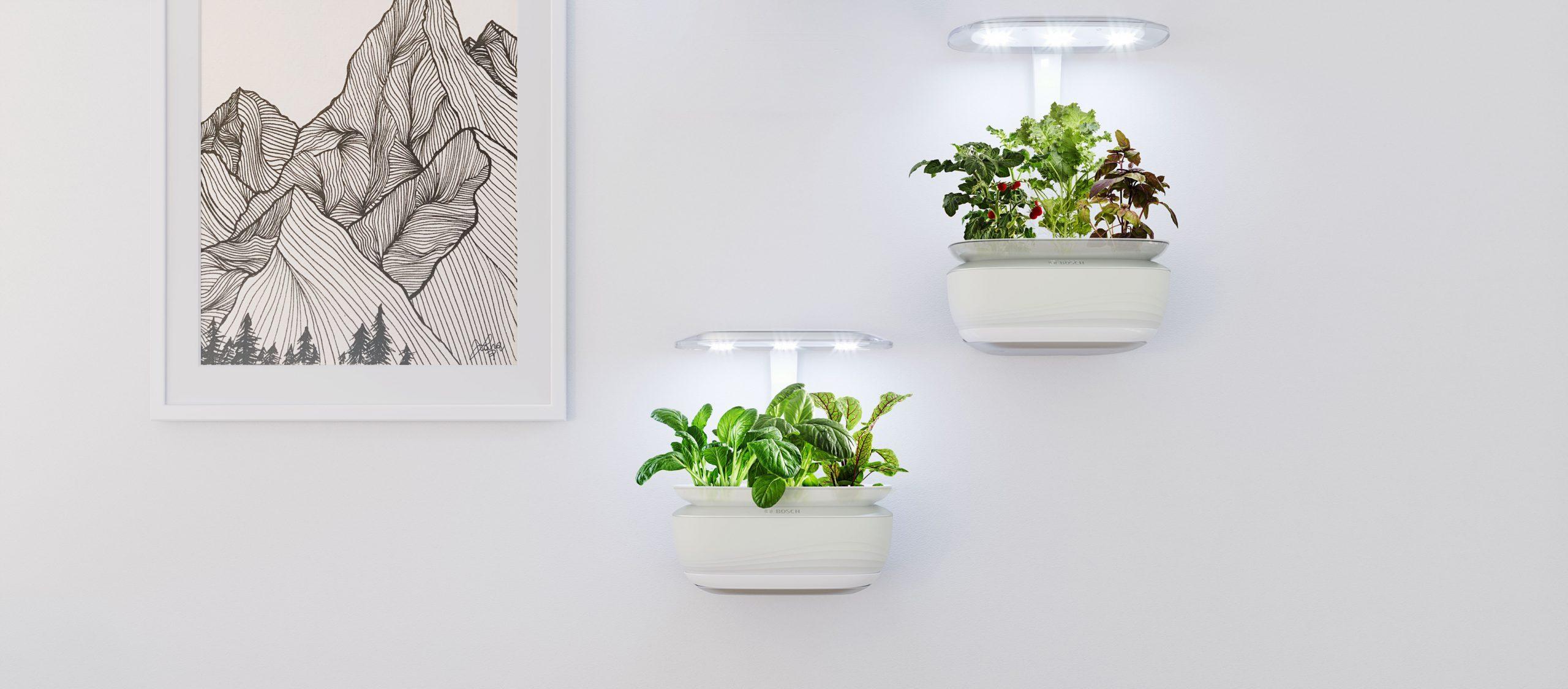 Bosch Smart Grow, ein Highlight in der Wohnung. Foto: Bosch