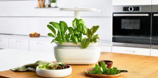 Bosch Smart Grow. Foto: Bosch